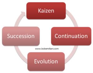 Kaizen Evolution