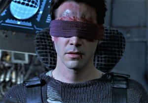 Neo Blind1